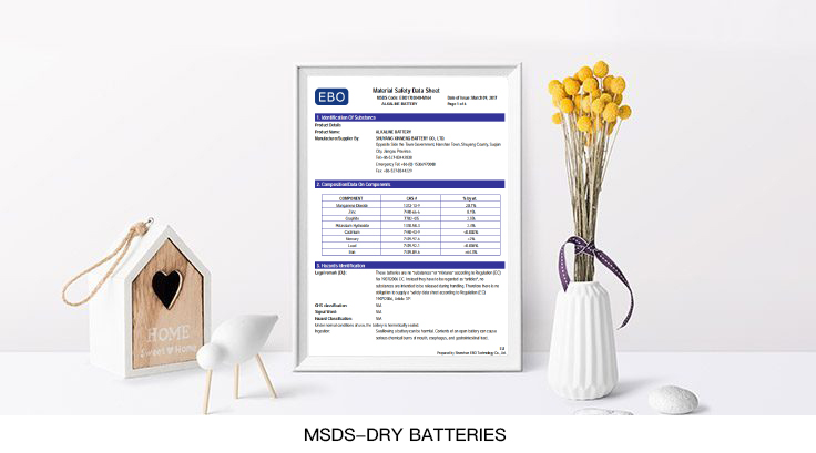 MSDS-dry-batteries